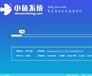 小鱼一键重装系统大师官方版v11.5.44.1230